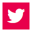 Icon Social Red 64 twitter